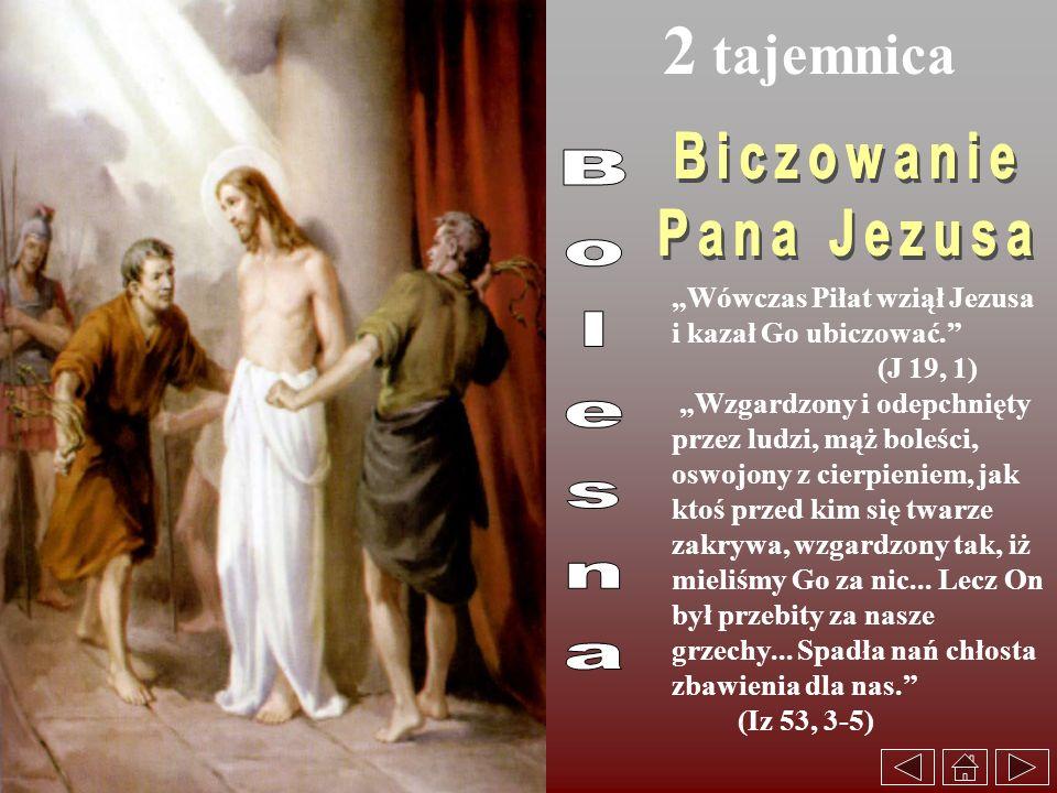 2 tajemnica Wówczas Piłat wziął Jezusa i kazał Go ubiczować. (J 19, 1) Wzgardzony i odepchnięty przez ludzi, mąż boleści, oswojony z cierpieniem, jak