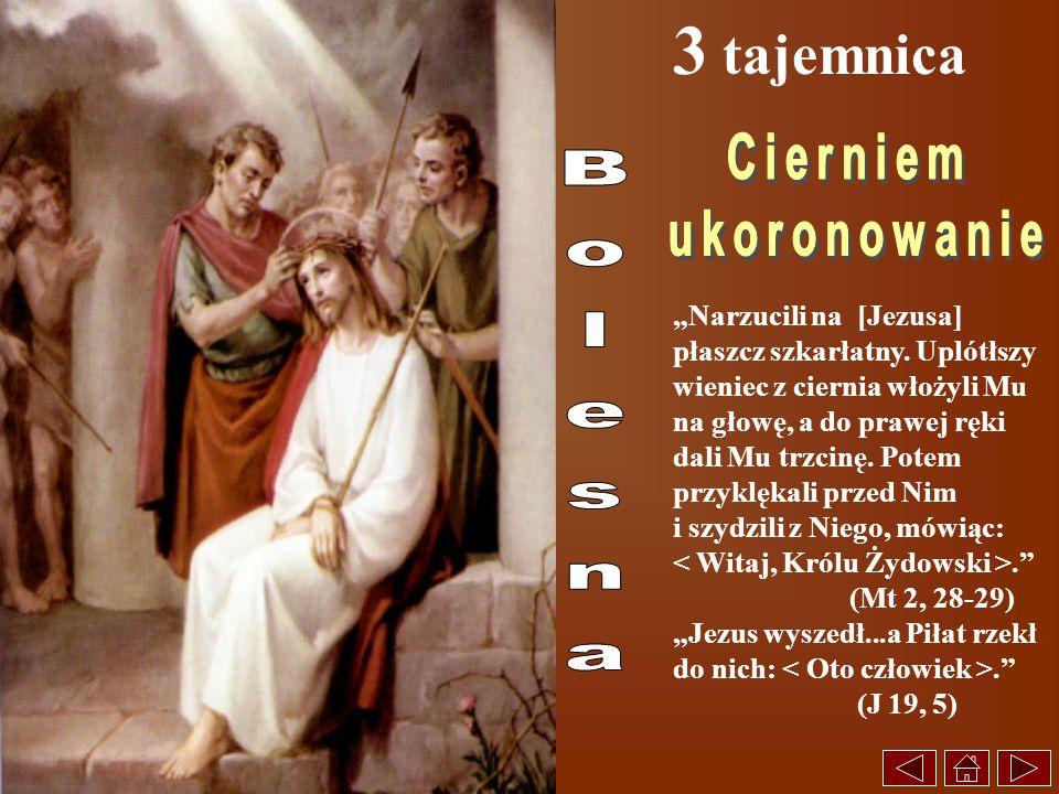 3 tajemnica Narzucili na [Jezusa] płaszcz szkarłatny. Uplótłszy wieniec z ciernia włożyli Mu na głowę, a do prawej ręki dali Mu trzcinę. Potem przyklę