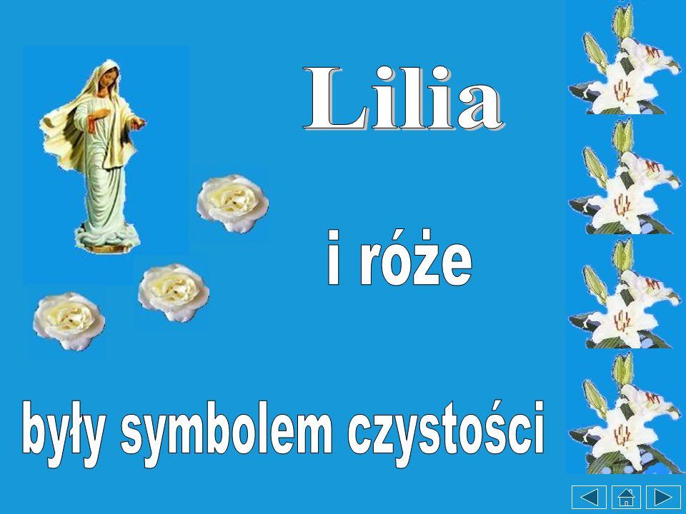 Adresy stron internetowych www.mateusz.pl/święci www.adonai.pl http://www.wiara.pl/temathttp://www.angelus.pl www.różańcowe - karty.pl http://www.brewiarz.katolik.pl/czytelnia/swieci/ www.teologia.pl www.dominikanie.szczecin.pl www.Matka Boża fatimska.pl www.sw.Lucja.alleluja.pl www.Pieśni WMU:,,Eli, Eli- Ave Maryja www.Pieśni WMU:,,Eli, Eli- Ave Maryja