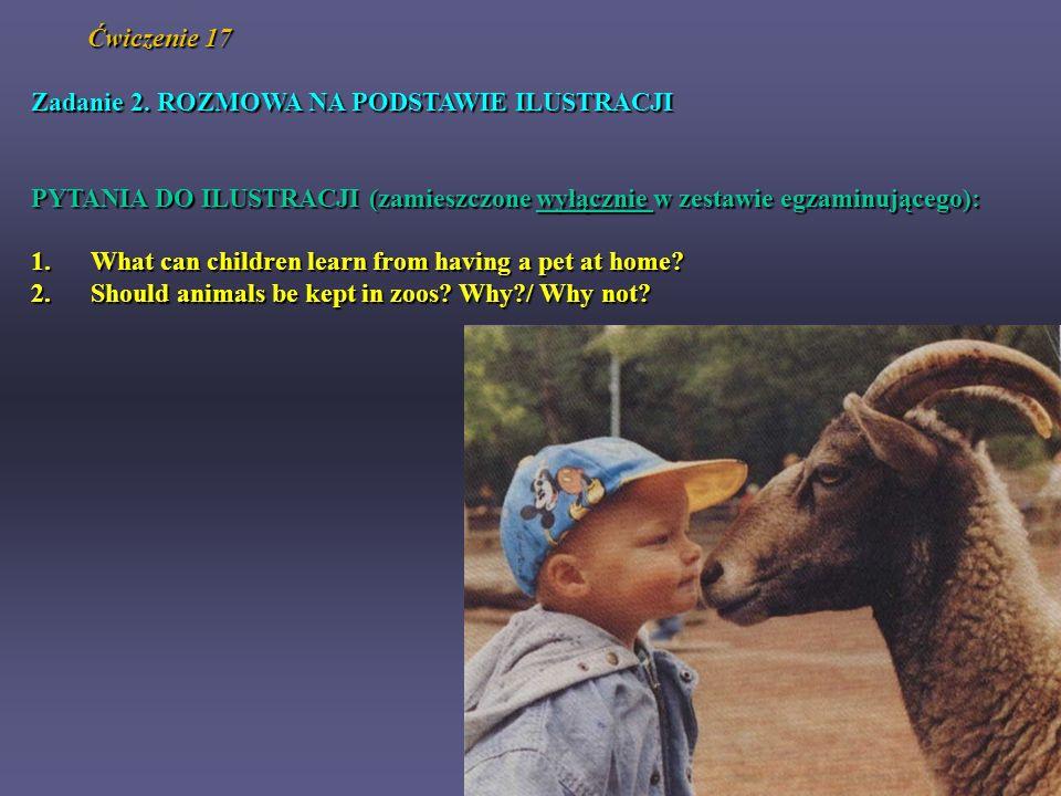 Ćwiczenie 17 Zadanie 2. ROZMOWA NA PODSTAWIE ILUSTRACJI PYTANIA DO ILUSTRACJI (zamieszczone wyłącznie w zestawie egzaminującego): 1. What can children