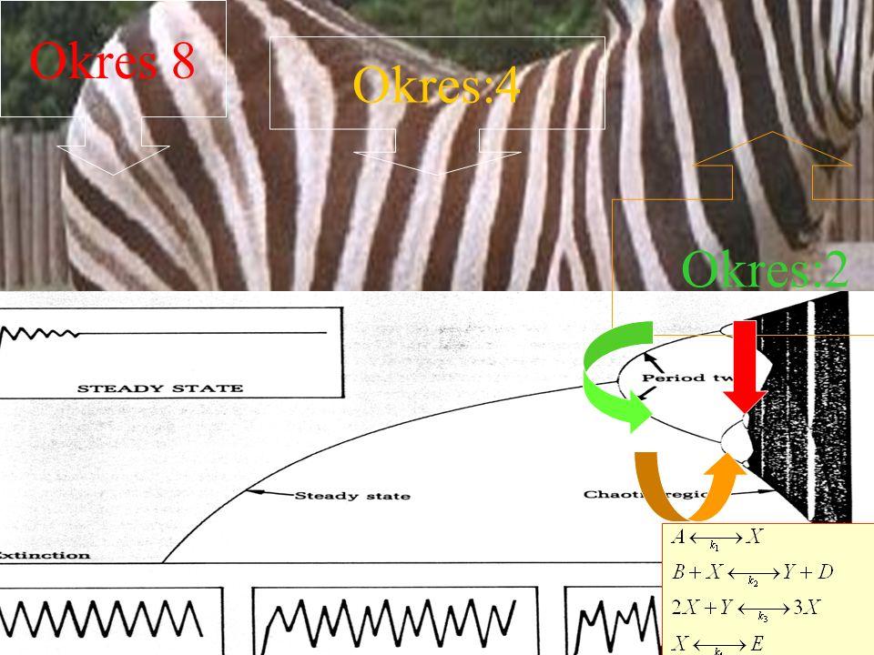 Struktury dyssypatywne Marcin Piela: 1 klik I str.dyss. DALEKA od rownowagi, strumienie, potem drugi klik NIEZWYLE skomplikowana reakcja na otoczenie