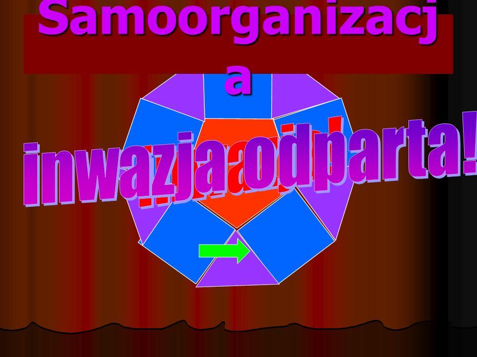Samoorganizacj a