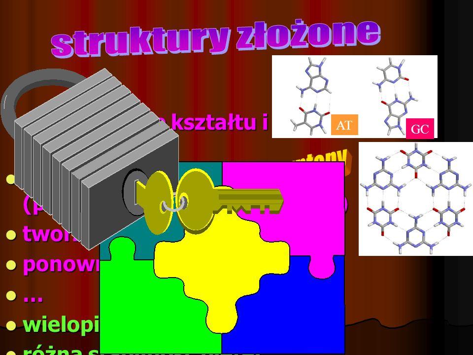 Dopasowanie kształtu i oddziaływań Dopasowanie kształtu i oddziaływań rozpoznanie molekularne (parowanie syntonów I-rzędu) rozpoznanie molekularne (pa