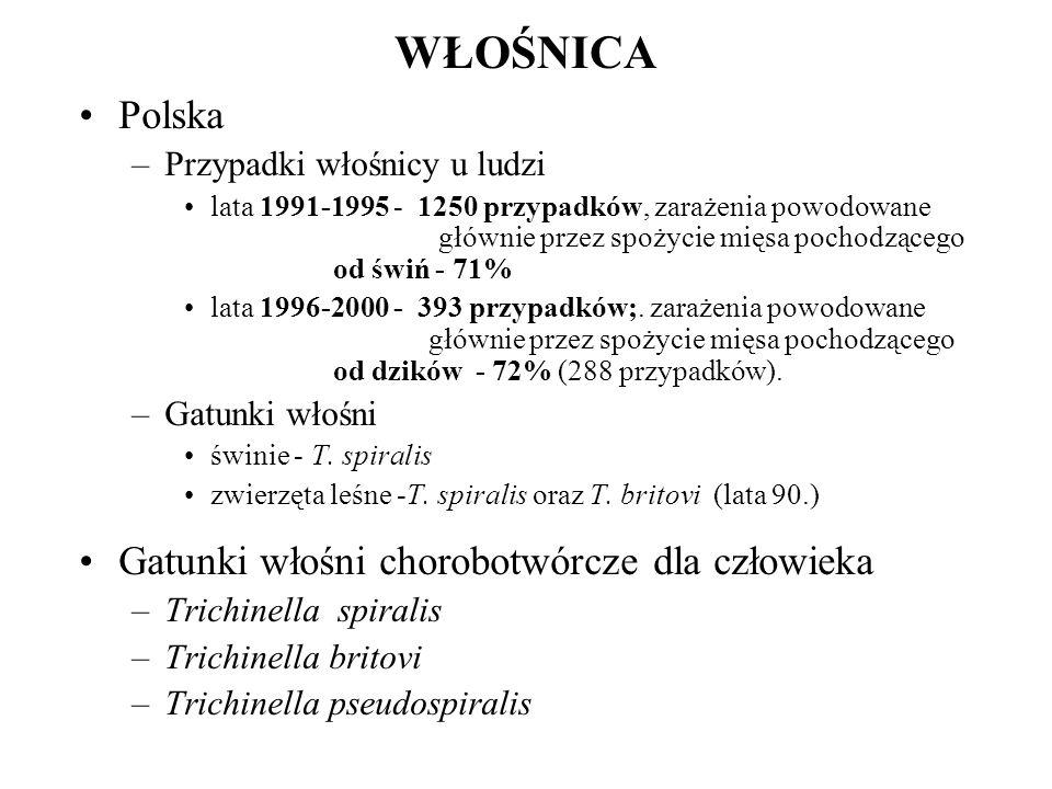 WŁOŚNICA Polska –Przypadki włośnicy u ludzi lata 1991-1995 - 1250 przypadków, zarażenia powodowane głównie przez spożycie mięsa pochodzącego od świń -