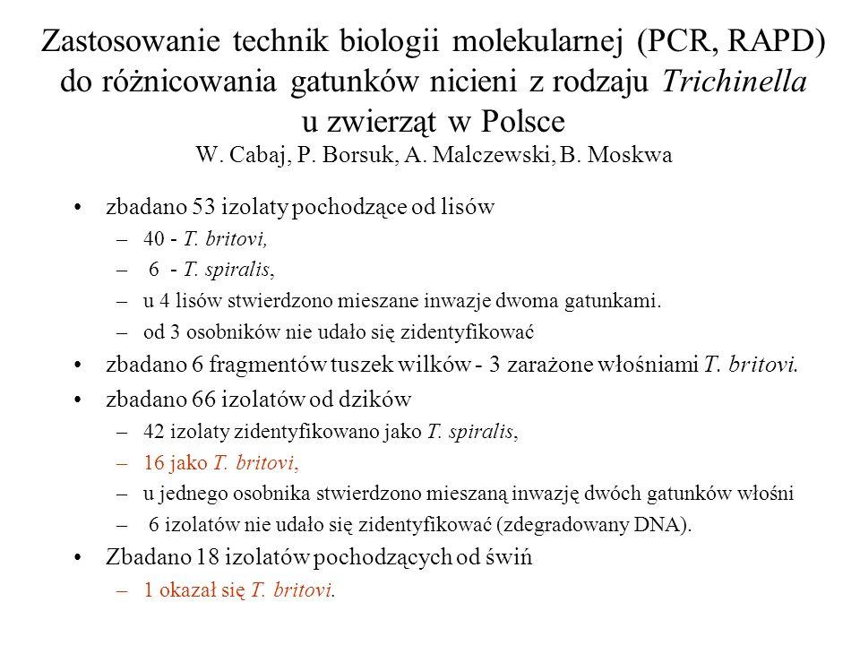 Zastosowanie technik biologii molekularnej (PCR, RAPD) do różnicowania gatunków nicieni z rodzaju Trichinella u zwierząt w Polsce W. Cabaj, P. Borsuk,