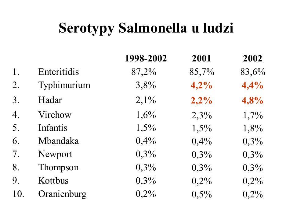 Serotypy Salmonella u ludzi 0,3%Kottbus9. 0,3%Thompson8. 0,2%Oranienburg10. 0,3%Newport7. 0,4%Mbandaka6. 1,5%Infantis5. 1,6%Virchow4. 2,1%Hadar3. 3,8%