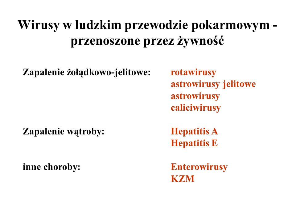 Zapalenie żołądkowo-jelitowe:rotawirusy astrowirusy jelitowe astrowirusy caliciwirusy Zapalenie wątroby:Hepatitis A Hepatitis E inne choroby:Enterowir