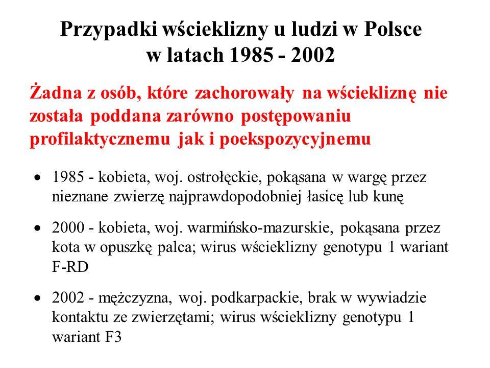 Przypadki wścieklizny u ludzi w Polsce w latach 1985 - 2002 1985 - kobieta, woj. ostrołęckie, pokąsana w wargę przez nieznane zwierzę najprawdopodobni