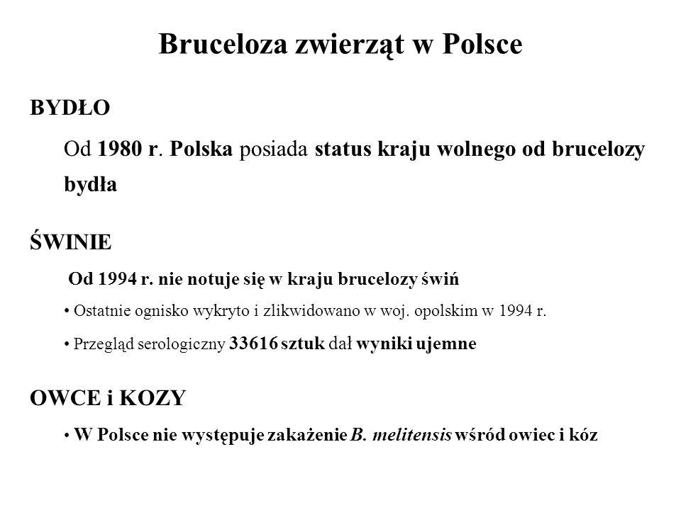Bruceloza zwierząt w Polsce BYDŁO Od 1980 r. Polska posiada status kraju wolnego od brucelozy bydła ŚWINIE Od 1994 r. nie notuje się w kraju brucelozy
