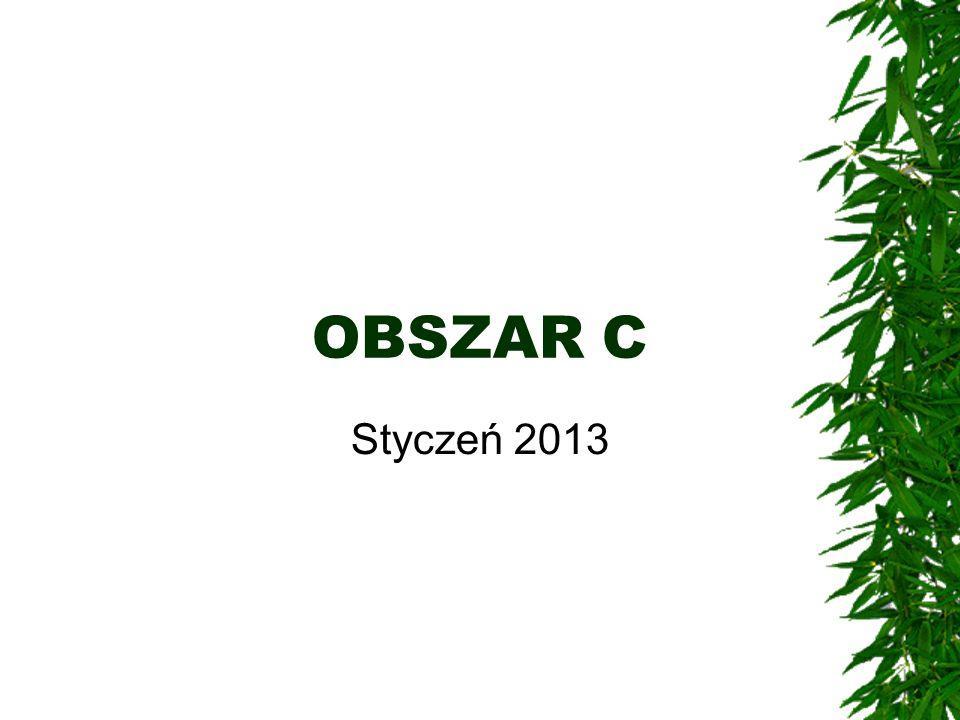 OBSZAR C Styczeń 2013