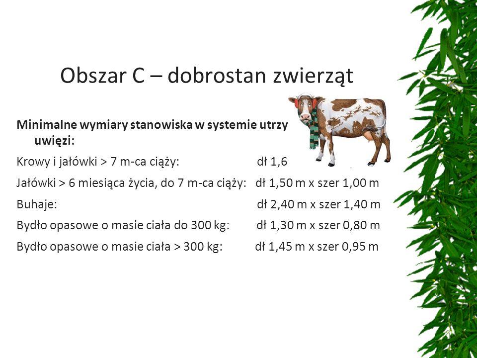 Obszar C – dobrostan zwierząt Minimalne wymiary stanowiska w systemie utrzymywania bydła na uwięzi: Krowy i jałówki > 7 m-ca ciąży: dł 1,60 m x szer 1,10 m Jałówki > 6 miesiąca życia, do 7 m-ca ciąży: dł 1,50 m x szer 1,00 m Buhaje: dł 2,40 m x szer 1,40 m Bydło opasowe o masie ciała do 300 kg: dł 1,30 m x szer 0,80 m Bydło opasowe o masie ciała > 300 kg: dł 1,45 m x szer 0,95 m