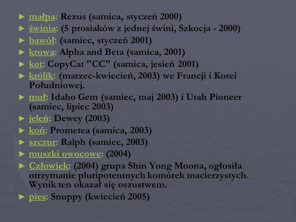 małpa: Rezus (samica, styczeń 2000)ałpa świnia: (5 prosiaków z jednej świni, Szkocja - 2000) świnia bawół: (samiec, styczeń 2001) bawół krowa: Alpha a