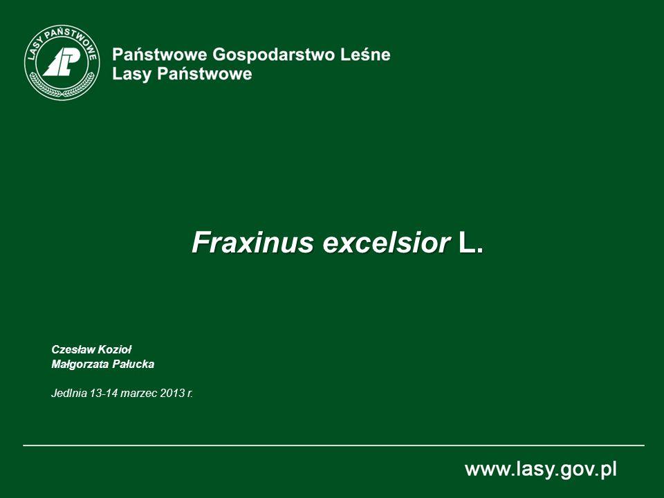 2 Fraxinus excelsior L. Zasięg występowania, dane EUFGIS 23.02.2010