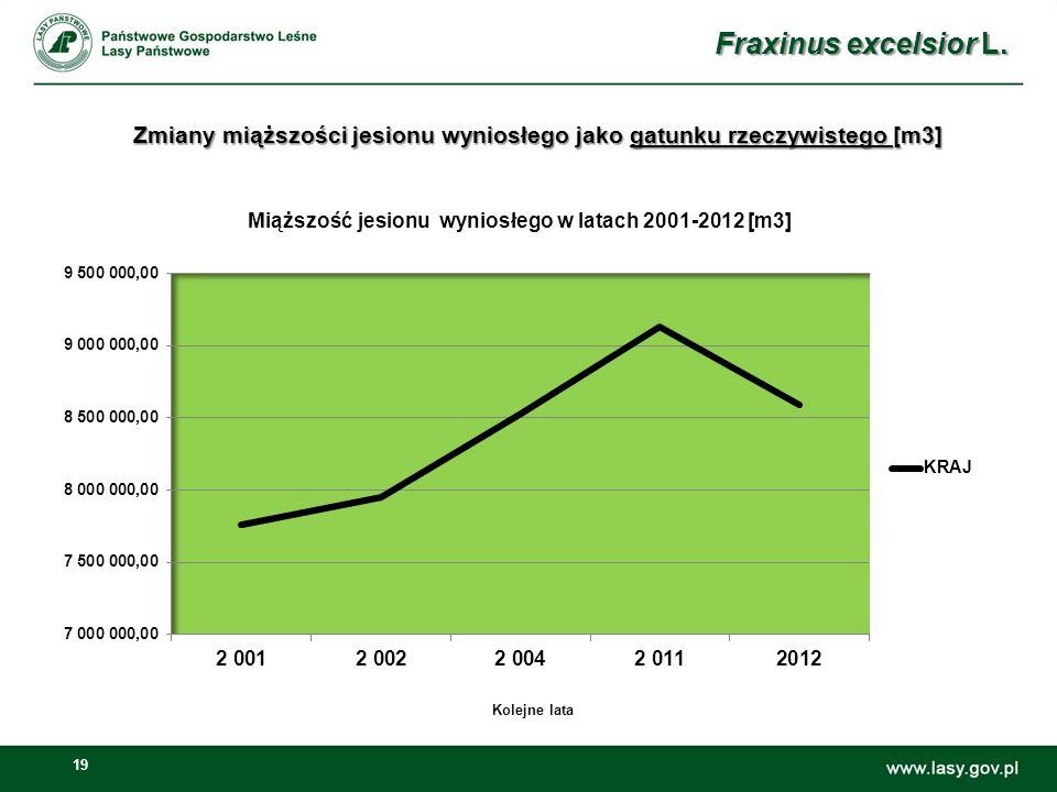 19 Zmiany miąższości jesionu wyniosłego jako gatunku rzeczywistego [m3] Fraxinus excelsior L.