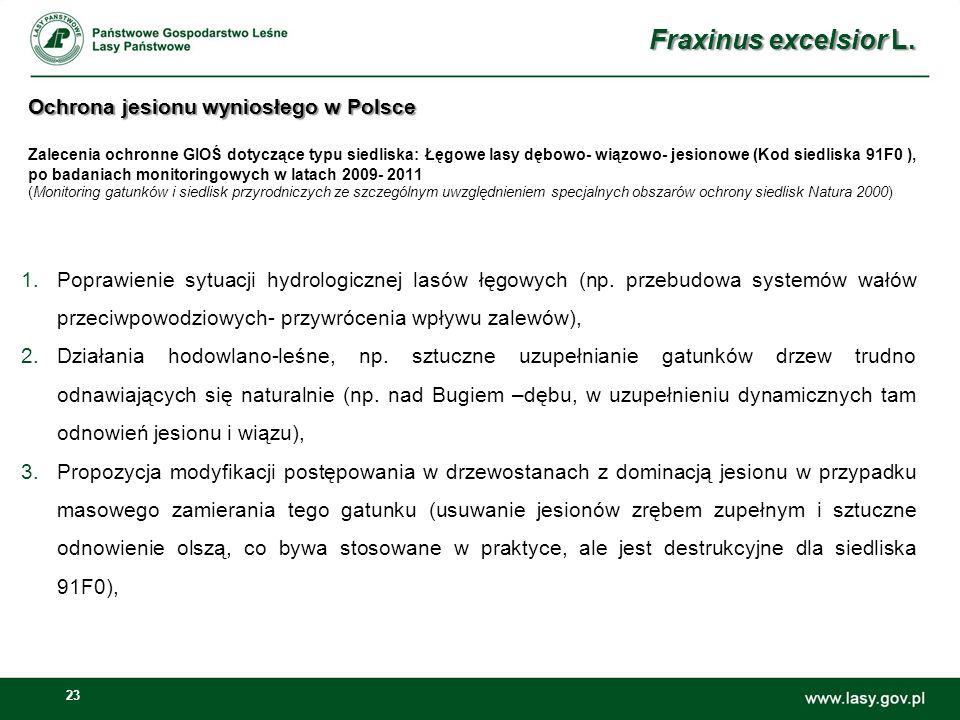 23 Ochrona jesionu wyniosłego w Polsce Ochrona jesionu wyniosłego w Polsce Zalecenia ochronne GIOŚ dotyczące typu siedliska: Łęgowe lasy dębowo- wiązowo- jesionowe (Kod siedliska 91F0 ), po badaniach monitoringowych w latach 2009- 2011 (Monitoring gatunków i siedlisk przyrodniczych ze szczególnym uwzględnieniem specjalnych obszarów ochrony siedlisk Natura 2000) 1.Poprawienie sytuacji hydrologicznej lasów łęgowych (np.