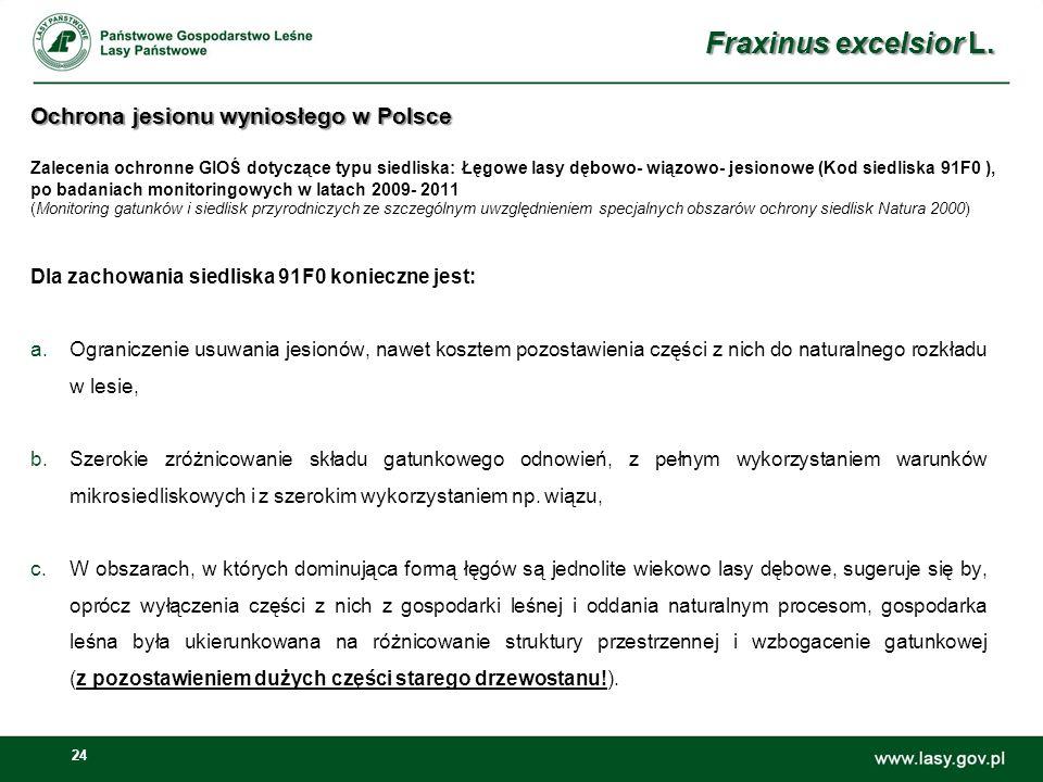 24 Ochrona jesionu wyniosłego w Polsce Ochrona jesionu wyniosłego w Polsce Zalecenia ochronne GIOŚ dotyczące typu siedliska: Łęgowe lasy dębowo- wiązowo- jesionowe (Kod siedliska 91F0 ), po badaniach monitoringowych w latach 2009- 2011 (Monitoring gatunków i siedlisk przyrodniczych ze szczególnym uwzględnieniem specjalnych obszarów ochrony siedlisk Natura 2000) Dla zachowania siedliska 91F0 konieczne jest: a.Ograniczenie usuwania jesionów, nawet kosztem pozostawienia części z nich do naturalnego rozkładu w lesie, b.Szerokie zróżnicowanie składu gatunkowego odnowień, z pełnym wykorzystaniem warunków mikrosiedliskowych i z szerokim wykorzystaniem np.