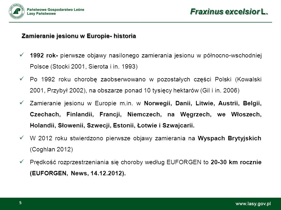 5 Zamieranie jesionu w Europie- historia 1992 rok- pierwsze objawy nasilonego zamierania jesionu w północno-wschodniej Polsce (Stocki 2001, Sierota i in.