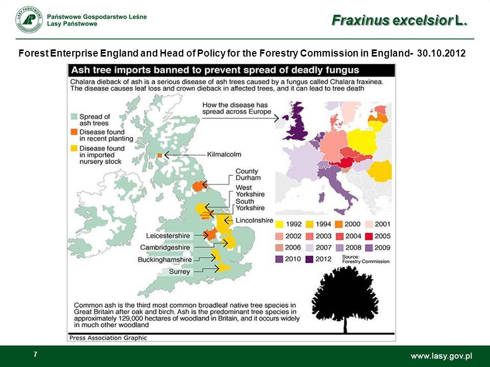 8 Zamieranie jesionu wyniosłego w Wielkiej Brytanii- podejmowane działania 1.Podjęcie szeroko zakrojonych działań dla rozpoznania problemu zamierania jesionu wyniosłego (Js jest trzecim najczęściej występującym gatunkiem drzewa liściastego i drugim najczęściej hodowanym w UK), 2.