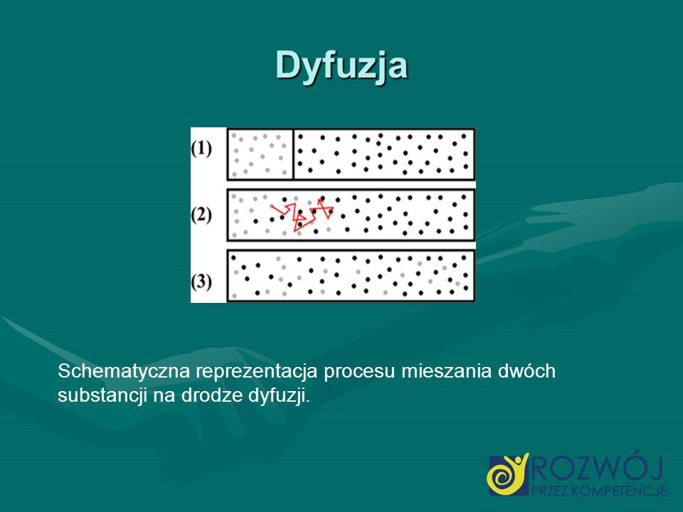 Dyfuzja Schematyczna reprezentacja procesu mieszania dwóch substancji na drodze dyfuzji.