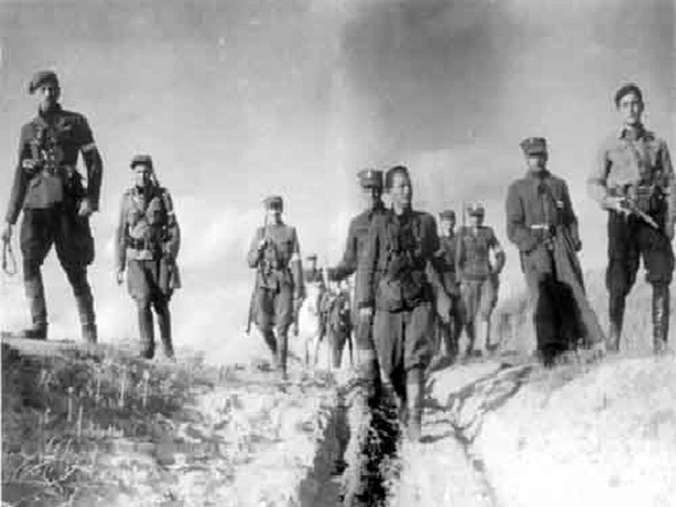 Przeciwnikiem SGO Narew było lewe skrzydło 2 armii niemieckiej generała von Küchlera wchodzące w skład XXI Korpusu generała von Falkenhorsta skoncentrowanego w Prusach Wschodnich.