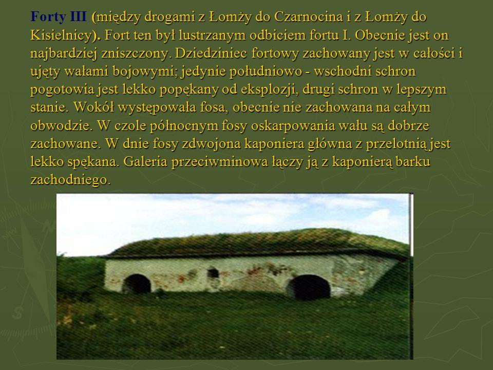(między drogami z Łomży do Czarnocina i z Łomży do Kisielnicy). Fort ten był lustrzanym odbiciem fortu I. Obecnie jest on najbardziej zniszczony. Dzie