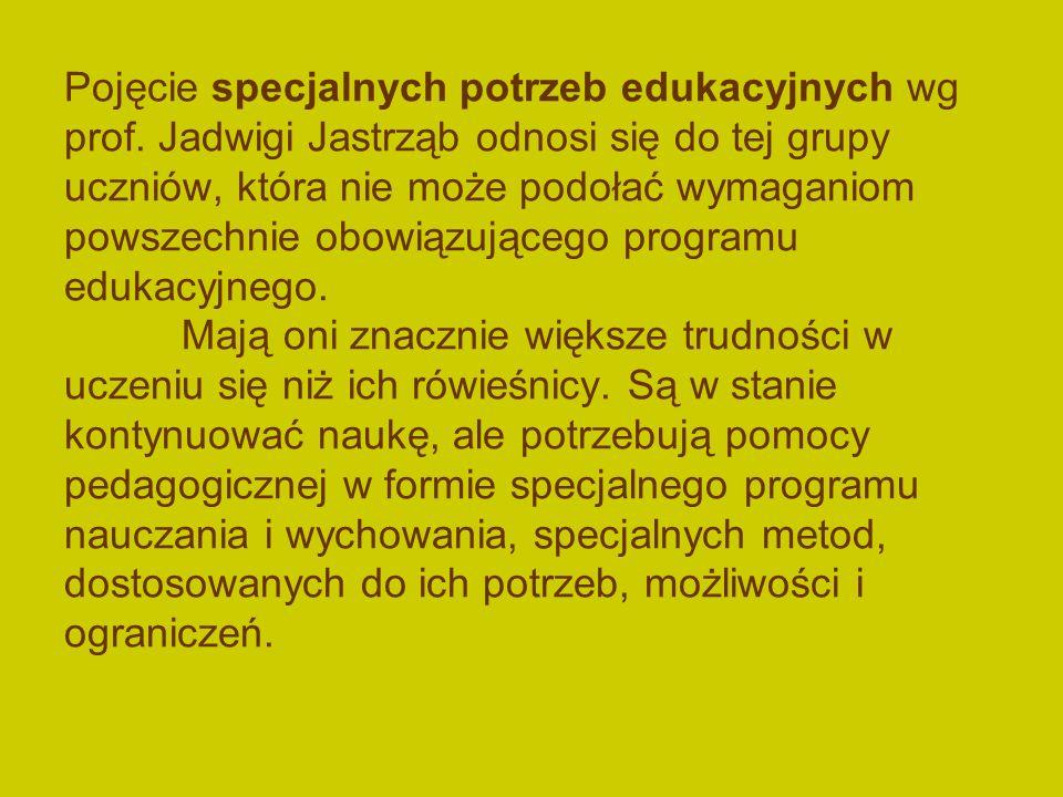 Pojęcie specjalnych potrzeb edukacyjnych wg prof.