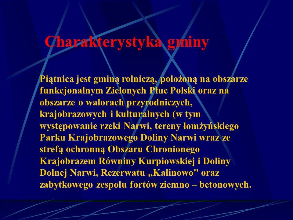 Piątnica jest gminą rolniczą, położoną na obszarze funkcjonalnym Zielonych Płuc Polski oraz na obszarze o walorach przyrodniczych, krajobrazowych i ku