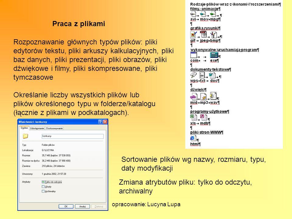 opracowanie: Lucyna Lupa Praca z plikami Rozpoznawanie głównych typów plików: pliki edytorów tekstu, pliki arkuszy kalkulacyjnych, pliki baz danych, p