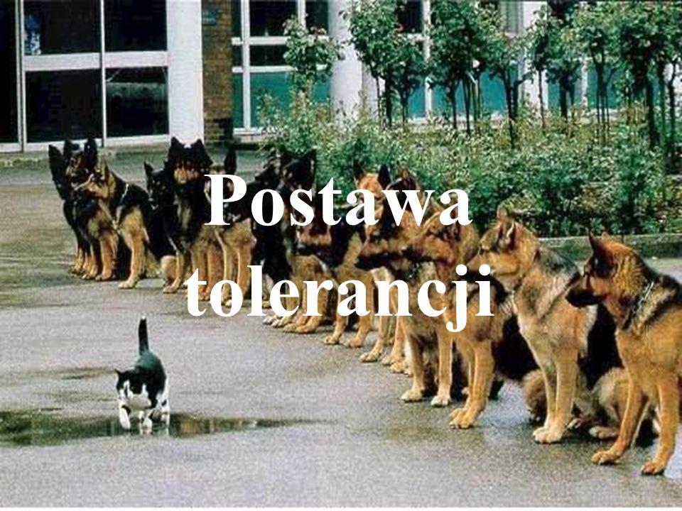Postawa tolerancji