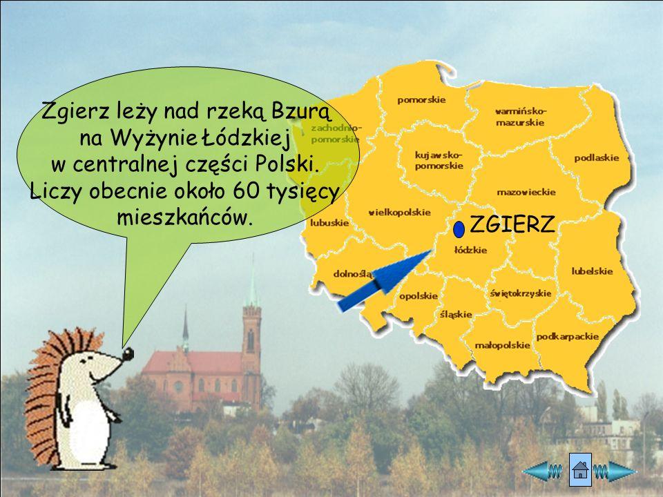 Zgierz leży nad rzeką Bzurą na Wyżynie Łódzkiej w centralnej części Polski.