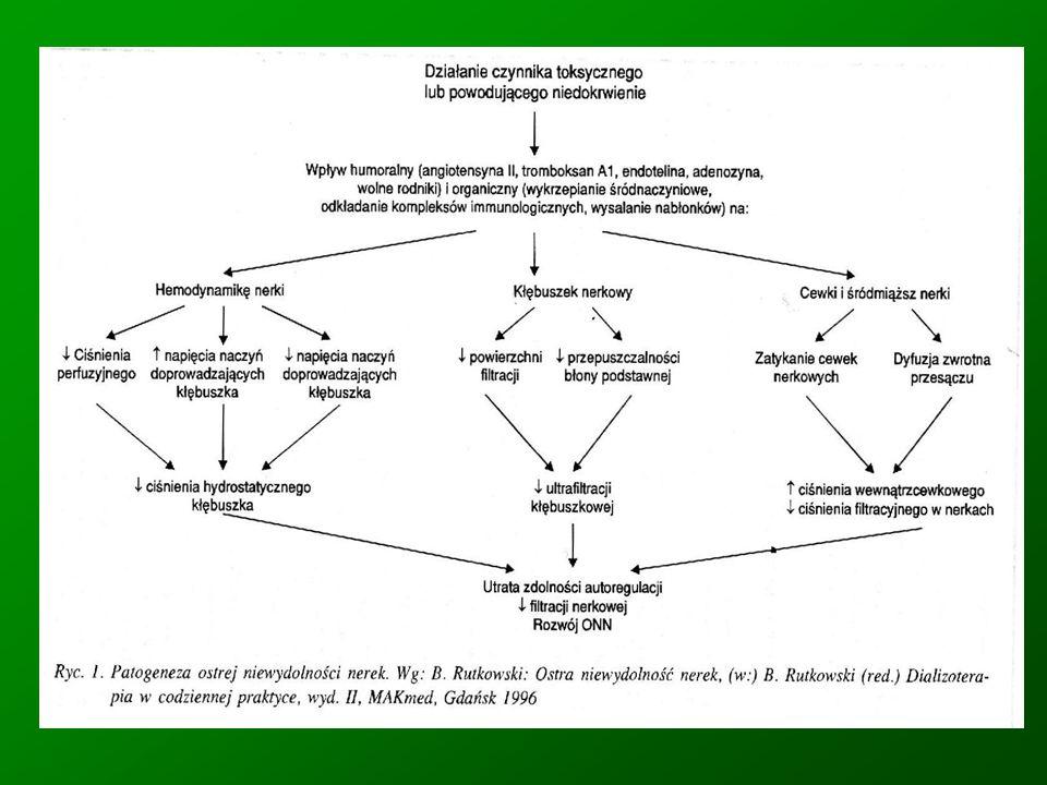 Ostra niewydolność nerek u dzieci Najczęstsze przyczyny nerkowe OSTRE ŚRÓDMIĄŻSZOWE ZAPALENIE NEREK ZAKRZEPICA ŻYŁ LUB TĘTNIC NERKOWYCH NEFROTOKSYNY : antybiotyki (aminoglikozydy, cefalosporyny, amfoterycyna B), jodowe środkikontrastowe, niesterydowe leki przeciwzapalne, cyklosporyna A, glikol etylenowy)