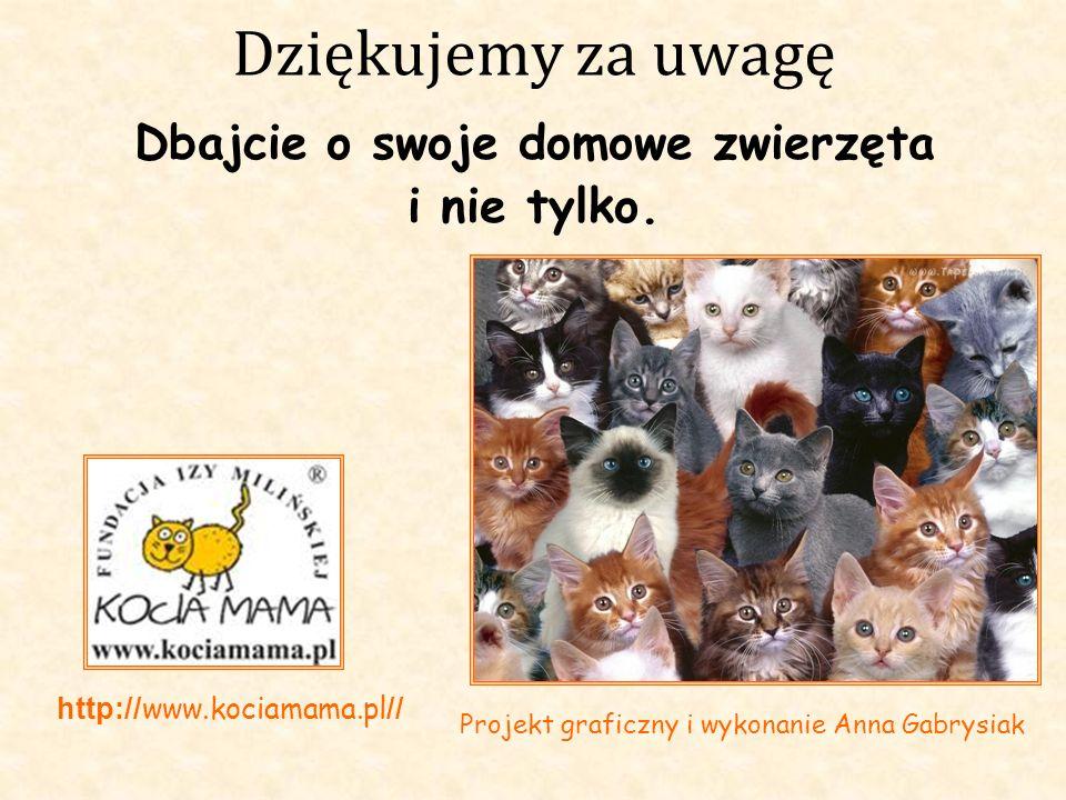 Dziękujemy za uwagę Dbajcie o swoje domowe zwierzęta i nie tylko. http:// www.kociamama.pl // Projekt graficzny i wykonanie Anna Gabrysiak