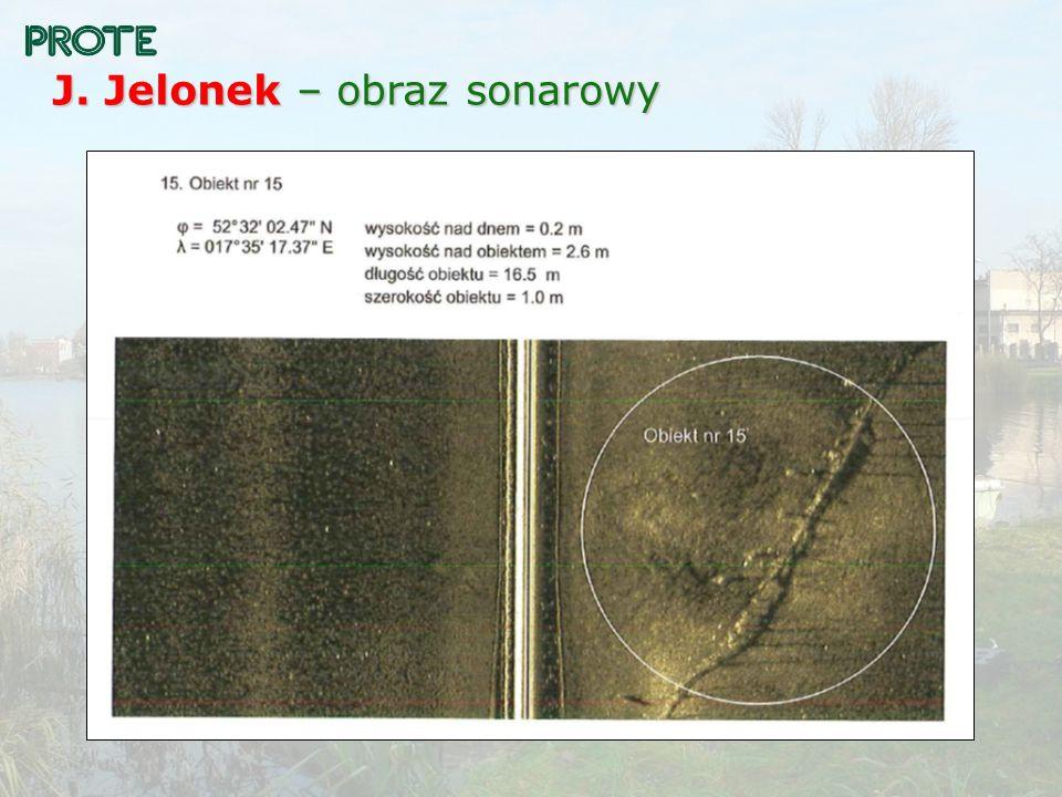 J. Jelonek – obraz sonarowy