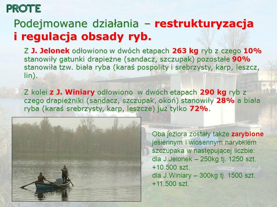 Podejmowane działania – restrukturyzacja i regulacja obsady ryb. Z J. Jelonek odłowiono w dwóch etapach 263 kg ryb z czego 10% stanowiły gatunki drapi