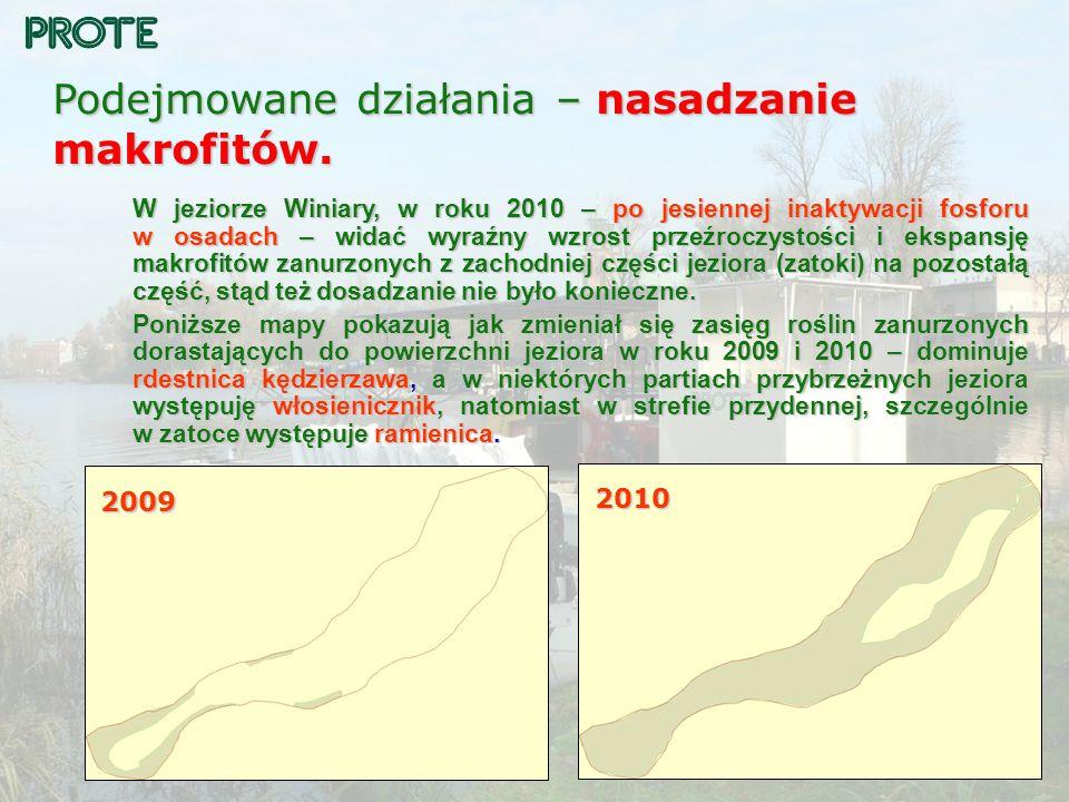Podejmowane działania – nasadzanie makrofitów. W jeziorze Winiary, w roku 2010 – po jesiennej inaktywacji fosforu w osadach – widać wyraźny wzrost prz