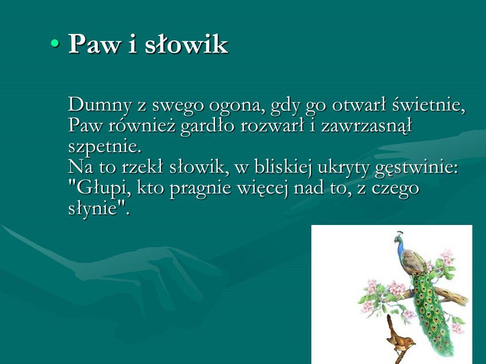 Paw i słowikPaw i słowik Dumny z swego ogona, gdy go otwarł świetnie, Paw również gardło rozwarł i zawrzasnął szpetnie. Na to rzekł słowik, w bliskiej