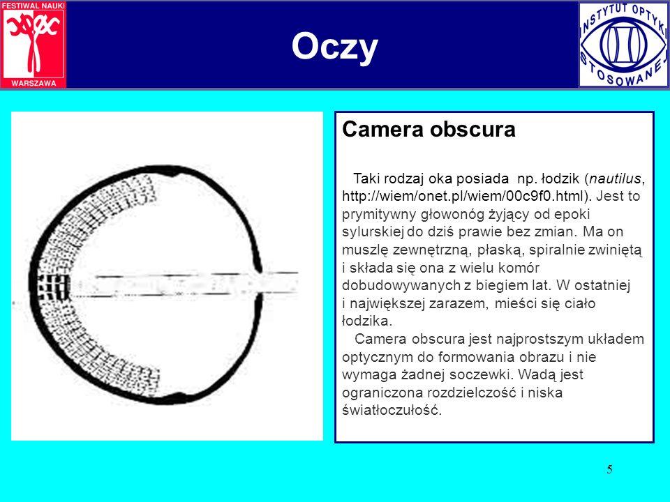 5 Camera obscura Taki rodzaj oka posiada np. łodzik (nautilus, http://wiem/onet.pl/wiem/00c9f0.html). Jest to prymitywny głowonóg żyjący od epoki sylu