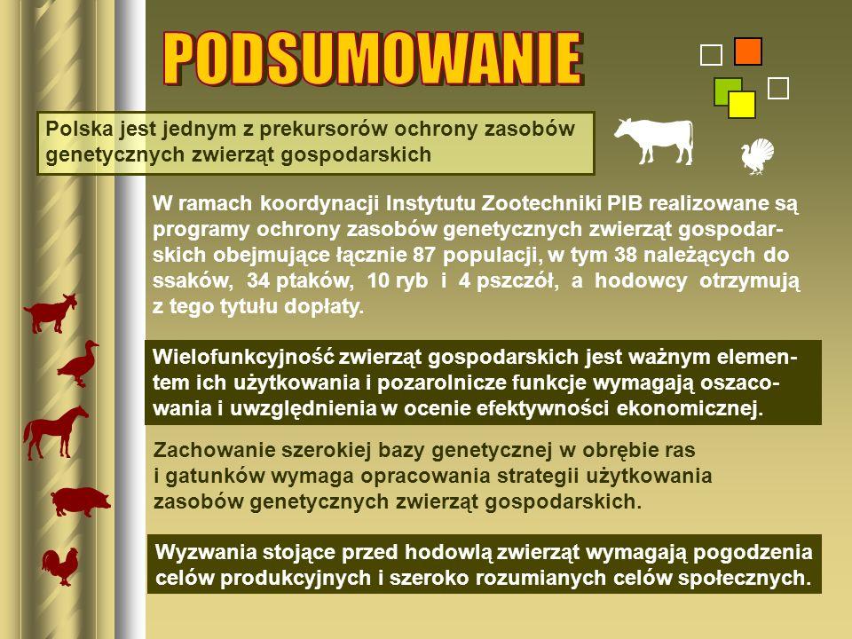 Polska jest jednym z prekursorów ochrony zasobów genetycznych zwierząt gospodarskich W ramach koordynacji Instytutu Zootechniki PIB realizowane są pro
