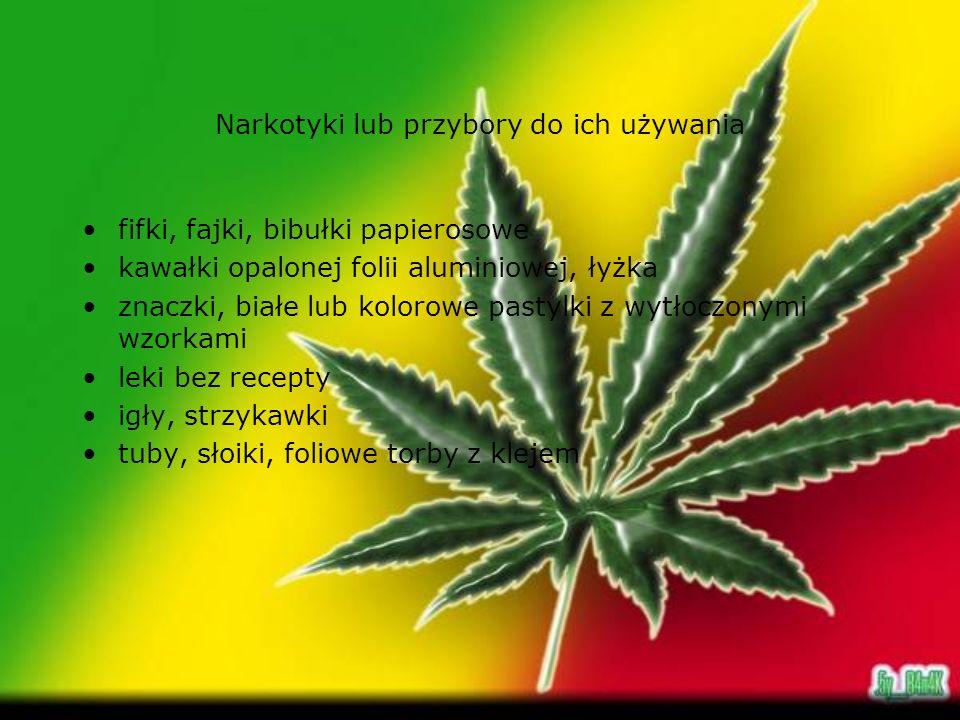 Narkotyki lub przybory do ich używania fifki, fajki, bibułki papierosowe kawałki opalonej folii aluminiowej, łyżka znaczki, białe lub kolorowe pastylk
