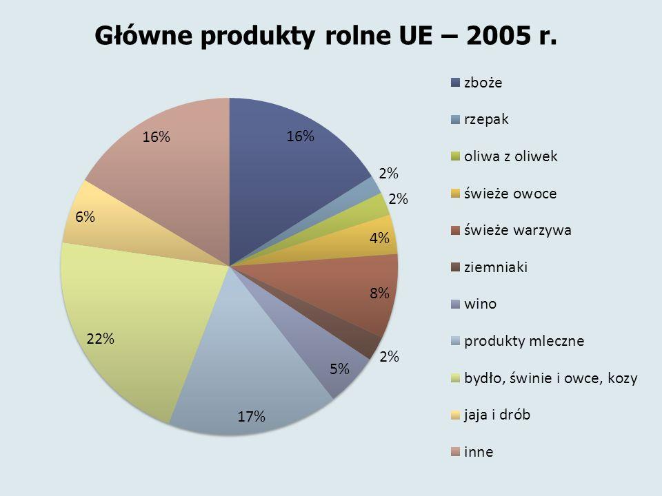 Główne produkty rolne UE – 2005 r.