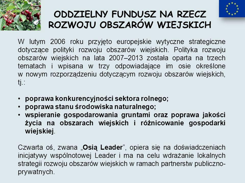 W lutym 2006 roku przyjęto europejskie wytyczne strategiczne dotyczące polityki rozwoju obszarów wiejskich.