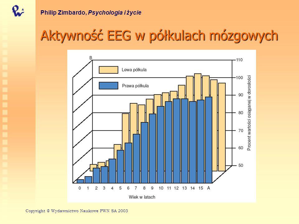 Aktywność EEG w półkulach mózgowych Philip Zimbardo, Psychologia i życie Copyright © Wydawnictwo Naukowe PWN SA 2003