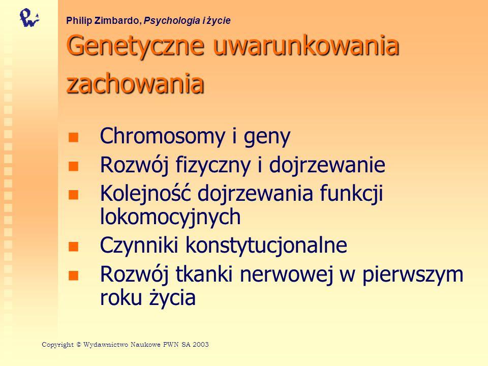 Genetyczne uwarunkowania zachowania Chromosomy i geny Rozwój fizyczny i dojrzewanie Kolejność dojrzewania funkcji lokomocyjnych Czynniki konstytucjonalne Rozwój tkanki nerwowej w pierwszym roku życia Philip Zimbardo, Psychologia i życie Copyright © Wydawnictwo Naukowe PWN SA 2003