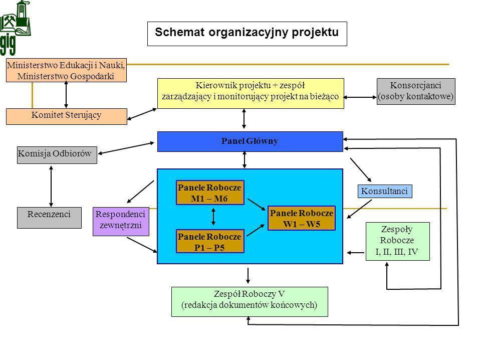Kierownik projektu + zespół zarządzający i monitorujący projekt na bieżąco Panel Główny Konsultanci Zespoły Robocze I, II, III, IV Konsorcjanci (osoby
