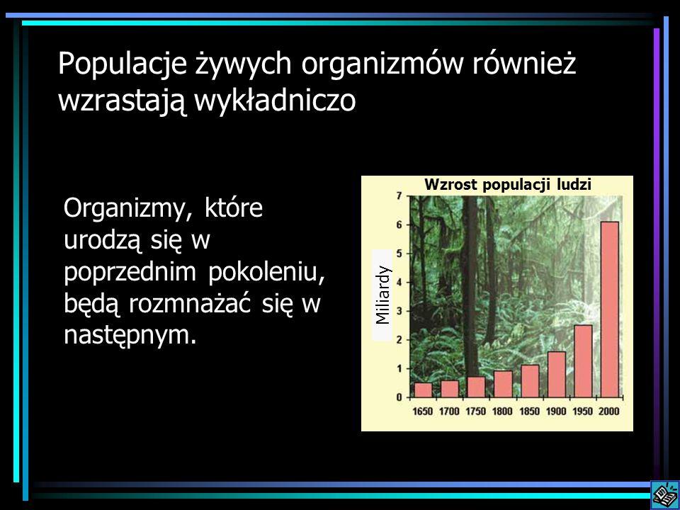 Populacje żywych organizmów również wzrastają wykładniczo Organizmy, które urodzą się w poprzednim pokoleniu, będą rozmnażać się w następnym. Wzrost p