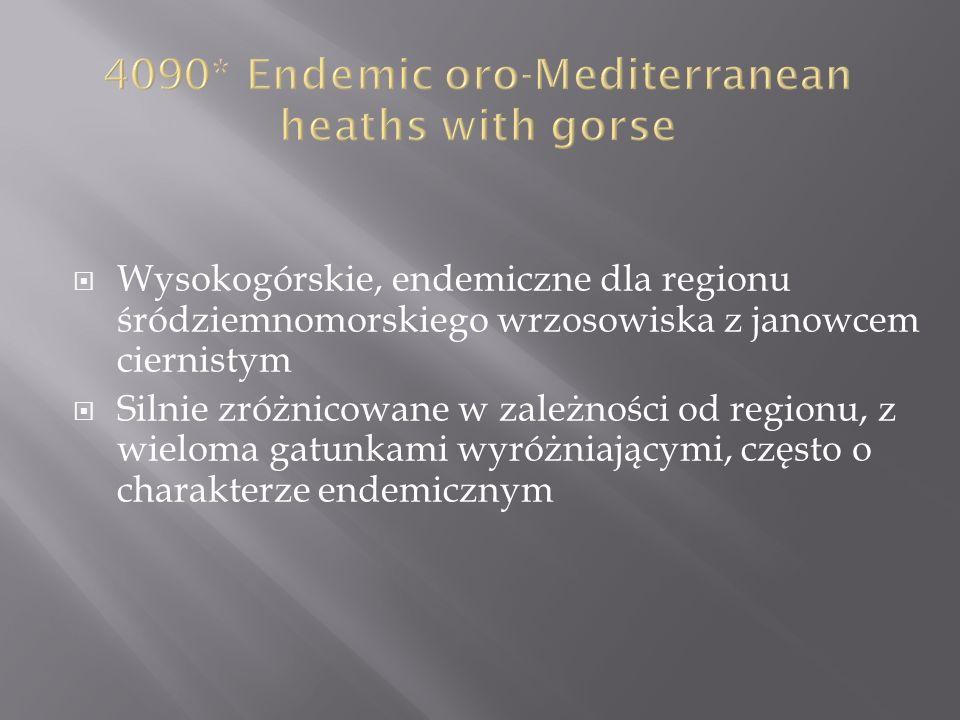 Wysokogórskie, endemiczne dla regionu śródziemnomorskiego wrzosowiska z janowcem ciernistym Silnie zróżnicowane w zależności od regionu, z wieloma gatunkami wyróżniającymi, często o charakterze endemicznym