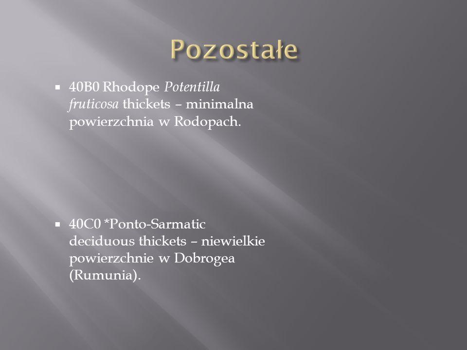 40B0 Rhodope Potentilla fruticosa thickets – minimalna powierzchnia w Rodopach. 40C0 *Ponto-Sarmatic deciduous thickets – niewielkie powierzchnie w Do