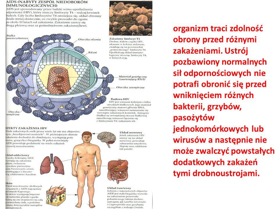 organizm traci zdolność obrony przed różnymi zakażeniami. Ustrój pozbawiony normalnych sił odpornościowych nie potrafi obronić się przed wniknięciem r