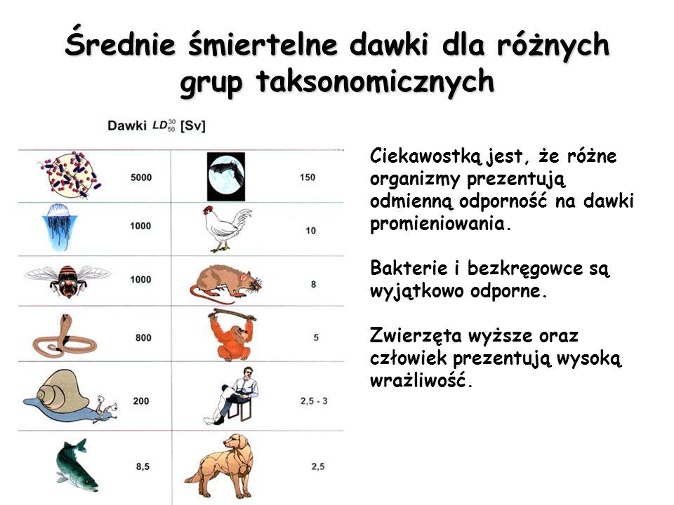 Wpływ promieniowania jonizującego na zdrowie Dawka (w Sv) Efekty 0,05 do 0,2 Możliwe efekty opóźnione (nowotwory ) i zaburzenia chromozomalne 0,25 do 1,0 Zmiany we krwi Ponad 0,5 Możliwa chwilowa niepłodność u mężczyzn 1 do 2 Wymioty, biegunka, zmniejszenie się odporności na infekcje, możliwe zahamowania rozrostu kości u dzieci 2 do 3 Silna choroba popromienna, mdłości, 25% prawdopodobieństwa zejścia śmiertelnego Ponad 3 Całkowita niepłodność u kobiet 3 do 4 Zniszczenie szpiku i miąższu kostnego, 50% zejścia śmiertelnego 4 do 10 Ostra choroba i śmierć (zazwyczaj w ciągu kilku dni) u 80% napromieniowanych