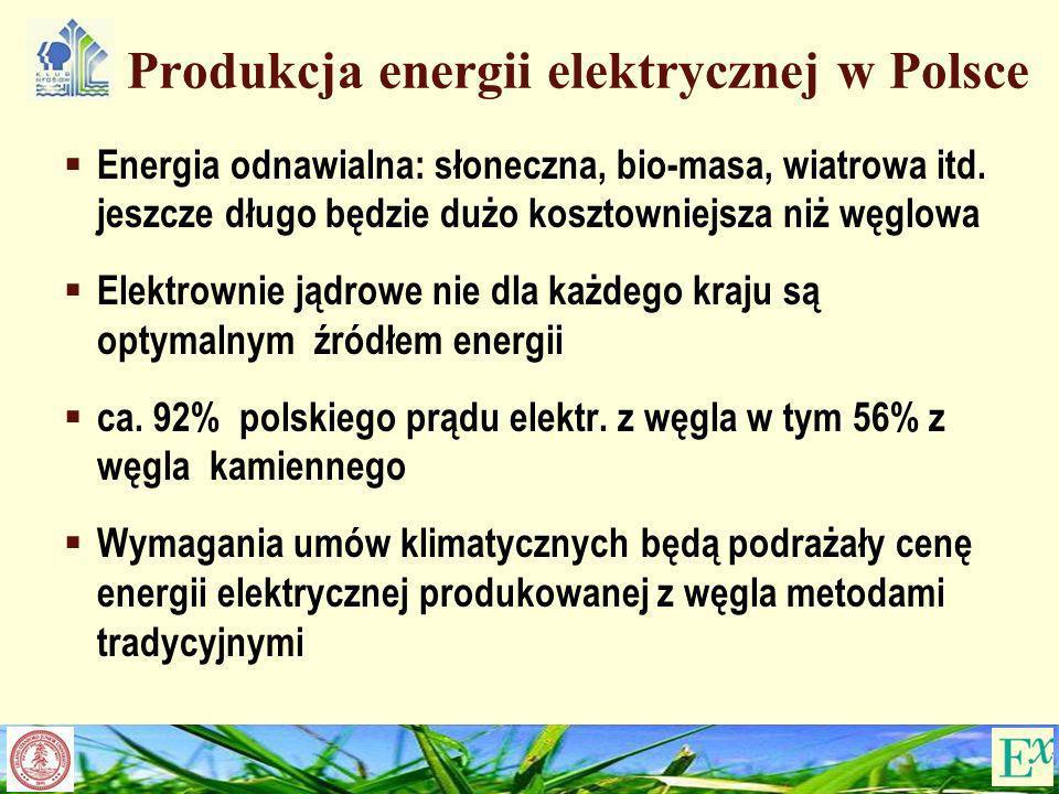 Produkcja energii elektrycznej w Polsce Energia odnawialna: słoneczna, bio-masa, wiatrowa itd. jeszcze długo będzie dużo kosztowniejsza niż węglowa El